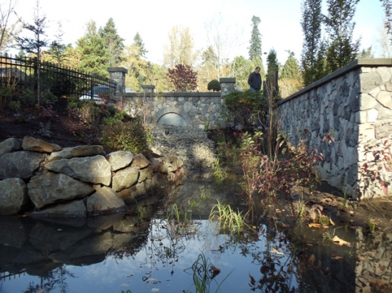 Bioswale Runoff Pond