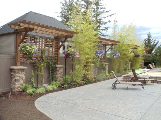 Cedar Mill Property – Arbor