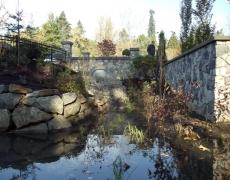 Runoff Pond